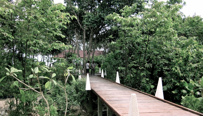 Arum Dalu Belitung