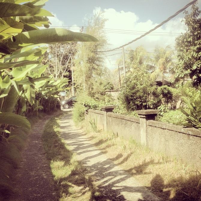 Pathway to Village - Ubud
