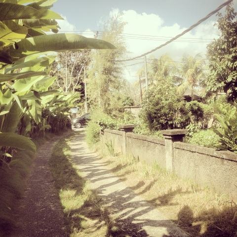Pathway to Village - Ubud