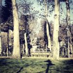 Park Baku Avenue