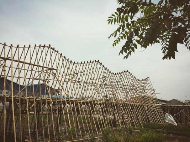 atap sekolah alfa omega di Telok Naga, model pertama menggunakan struktur bambu. Model kedua menggunakan struktur besi. Kedua model tersebut menggunakan curva parabloid untuk konstruksi bubungan atap.